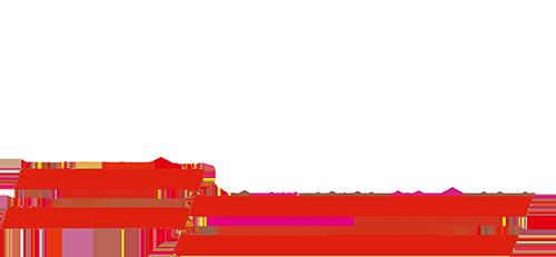 P.S.V. Vollenhove